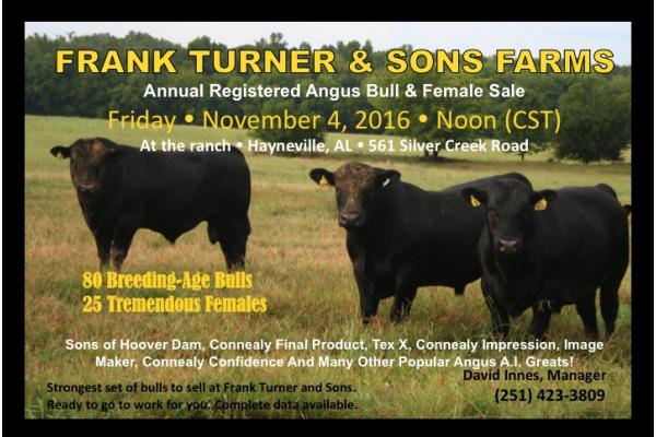 Frank Turner & Sons Bull and Female Sale